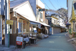 Nagatoro Iwadatami Street Shopping District