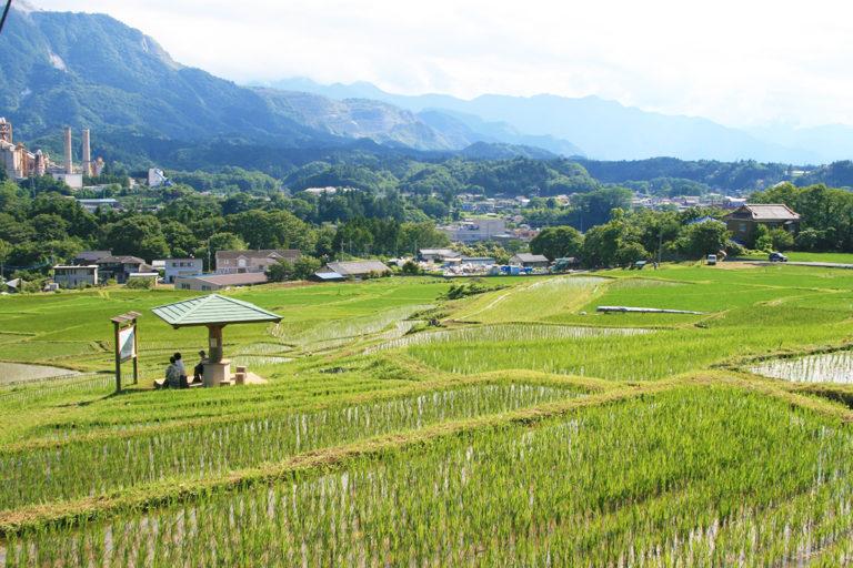 Terasaka Rice Terrace and Terasaka Ruins