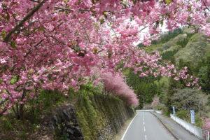 Yoshida Kaido Road