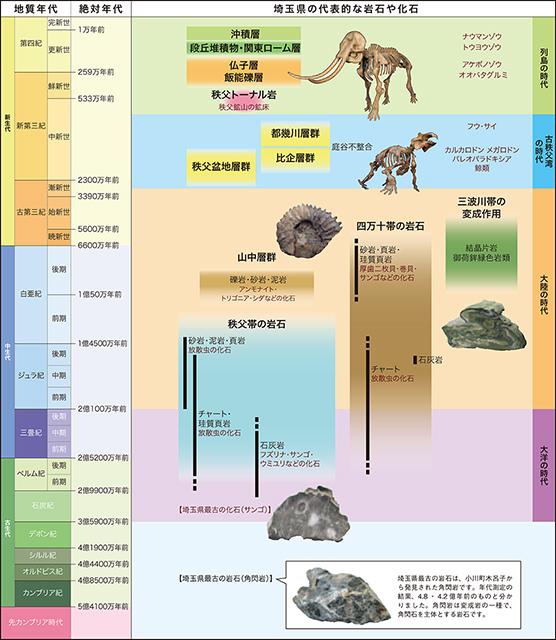 地質年表(資料提供:埼玉県立自然の博物館)