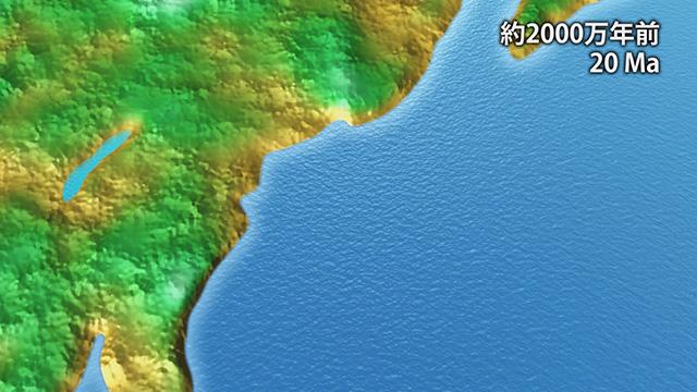2000万年前(提供:埼玉県自然の博物館)