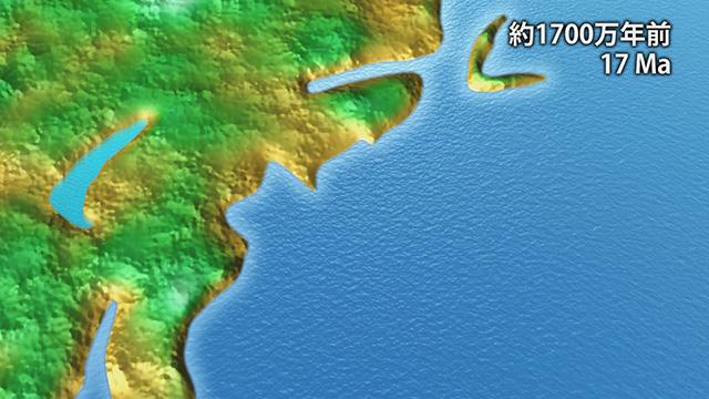 1700万年前(提供:埼玉県自然の博物館)