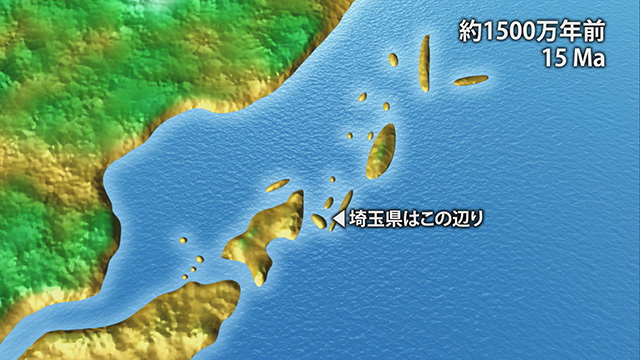 1500万年前(提供:埼玉県自然の博物館)