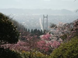 尾田蒔丘陵