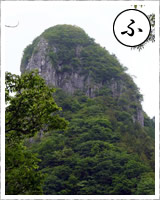「ふ」・・・二子山の石灰岩フズリナ化石 かつては秩父古生層と言われてた