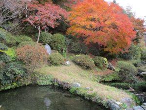 殿地(どんぢ)の庭園
