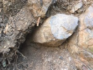 恐竜化石発掘隊